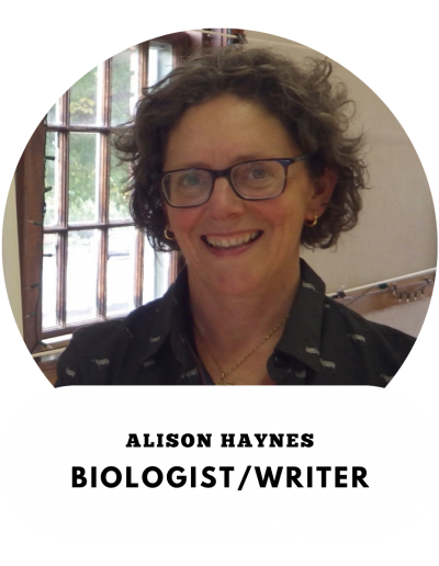 Alison Haynes - Biologist and Writer
