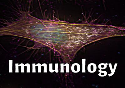 Ep. 10: Dr Bryan Heit (Immunologist)