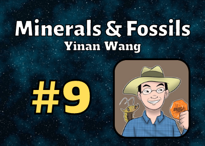 Ep. 9: Yinan Wang (Mineral and Fossil Expert)
