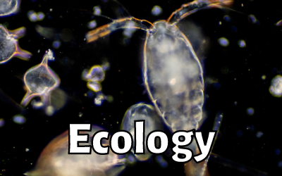 Ep. 12: Dr. Stephen Thackeray (Freshwater Ecologist)