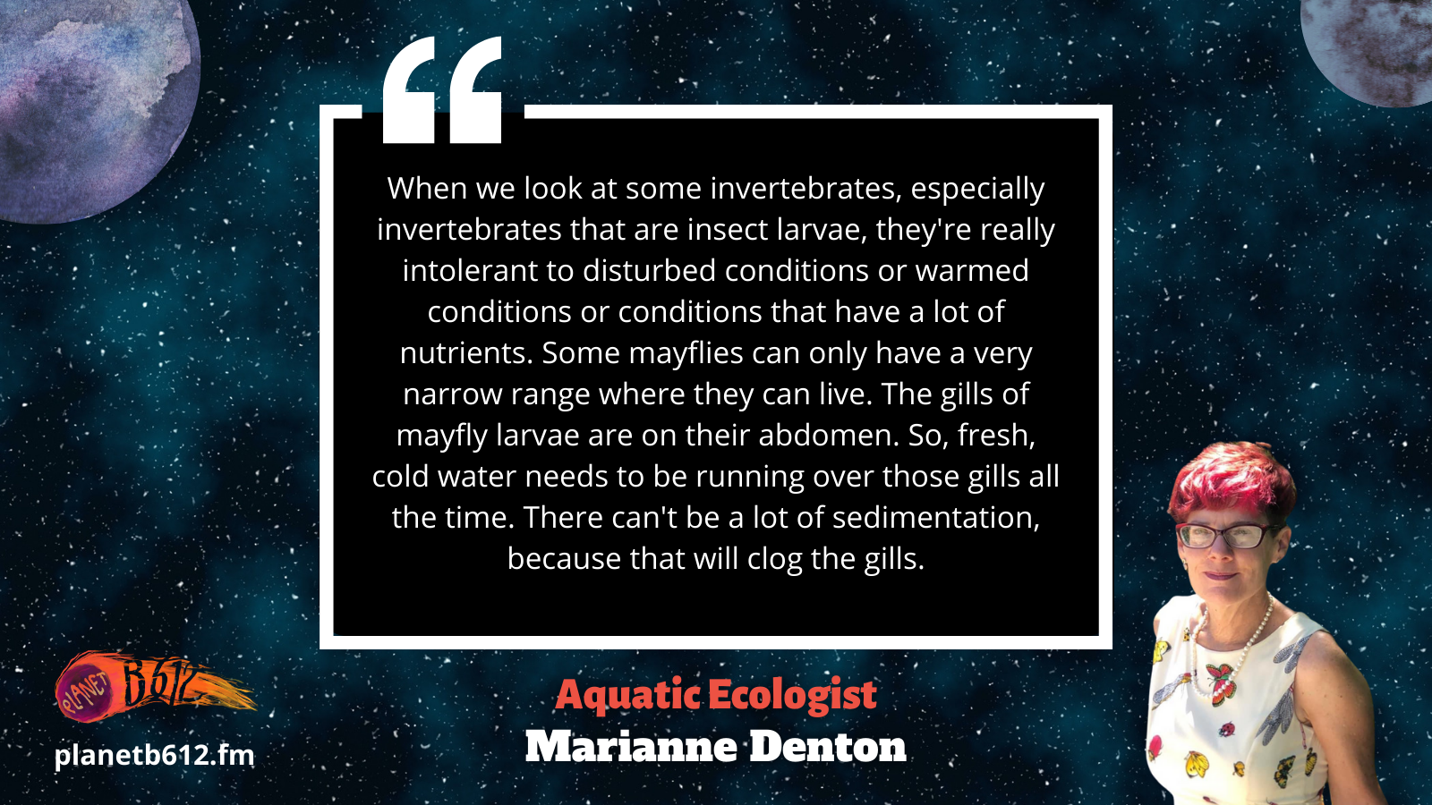 Marianne Denton quote about mayflies
