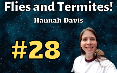 Ep. 28: Flies and termites with Hannah Davis