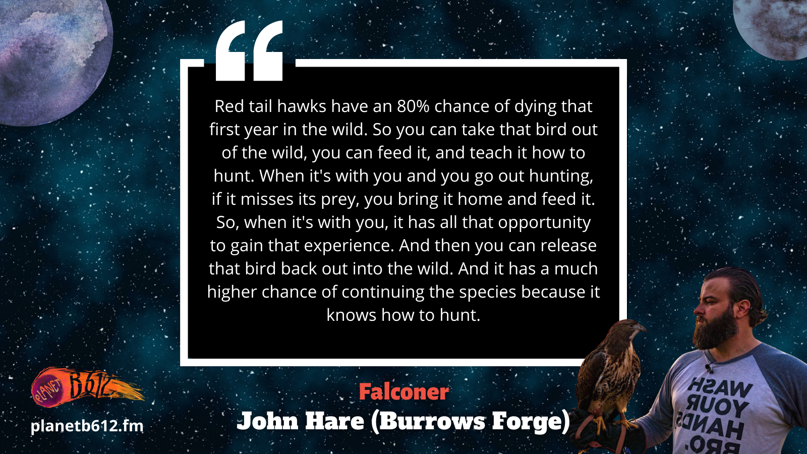 """John Hare from Burrows Forge explain: """"Red tail hawks have an 80% chance of dying that first year in the wild. So you can take that bird out of the wild, you can feed it, and teach it how to hunt. When it's with you and you go out hunting, if it misses its prey, you bring it home and feed it. So, when it's with you, it has all that opportunity to gain that experience. And then you can release that bird back out into the wild. And it has a much higher chance of continuing the species because it knows how to hunt."""""""