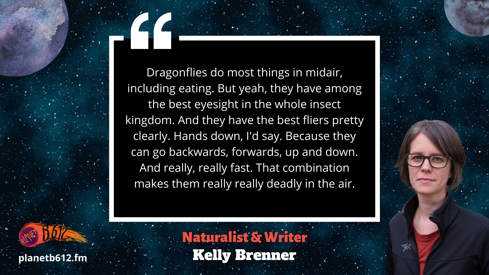 Kelly talks about dragonflies