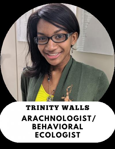 Trinity Walls - Arachnologist and Behavioral Ecologist