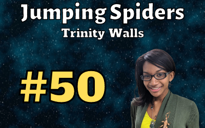 Ep. 50: Jumping Spiders with Trinity Walls